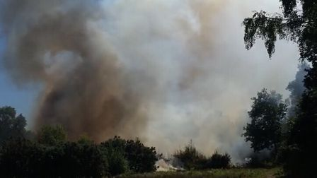 Large amounts of smoke seen coming off Mousehold Heath. PHOTO: Danny Rogers