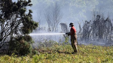 Fire fighters tackle the fire at Mousehold Heath. Picture: DENISE BRADLEY