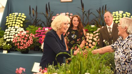 The Duchess of Cornwall on a walkabout at the Sandringham Flower Show. Picture: Ian Burt