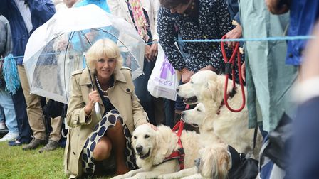 The Duchess of Cornwall meeting some furry friends at the Sandringham Flower Show. Picture: Ian Burt