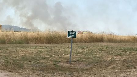 The fire spread five hectares before the emergency services gained control. Picture:Archant