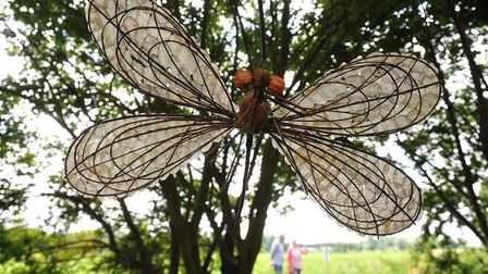 Work by Meg Amsden as at a previous Waveney Valley Sculpture Trail. Photo: Nick Butcher