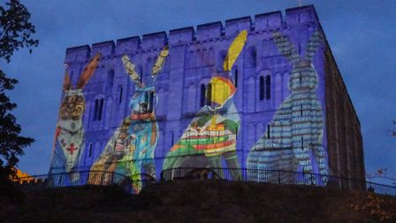 Images of some of the GoGoHares are being projected onto Norwich Castle to celebrate the charity art
