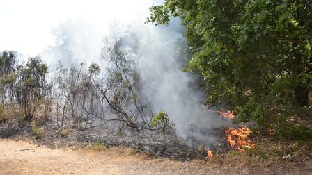 Firefighters have been dealing with another blaze at Mousehold Heath. Picture: Antony Kelly