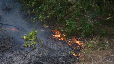 Firefighters have dealt with another blaze at Mousehold Heath. Picture: Antony Kelly