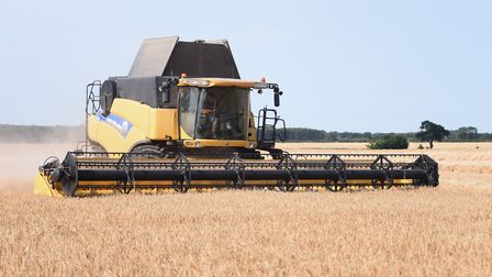 A combine harvester at work at Thrigby. Picture: DENISE BRADLEY