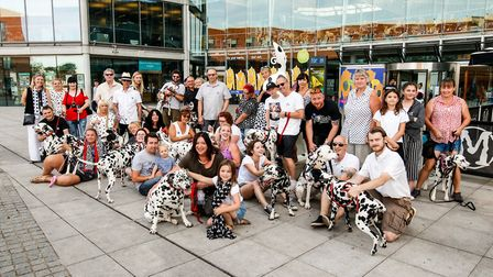Members of the Norfolk Dalmatian Owners UK group visited the GoGoHare Art-Hare with their dogs.Photo