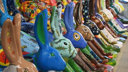 Some of the leverets designed by schools and communities as part of the GoGoHares project. Picture: