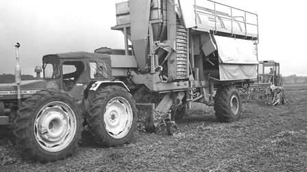 Pea harvesting machinery used in Norfolk in 1969. Picture: Archant.