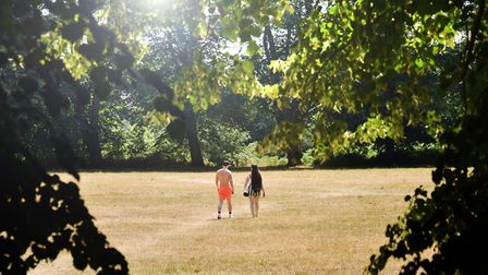 A couple walking across a parched Mousehold Heath in the summer sunshine. Norfolk has made a top ten