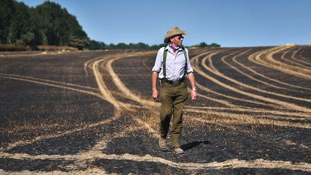 Horsford farmer Michael Keeler who lost a field of crops to fire.Picture: ANTONY KELLY