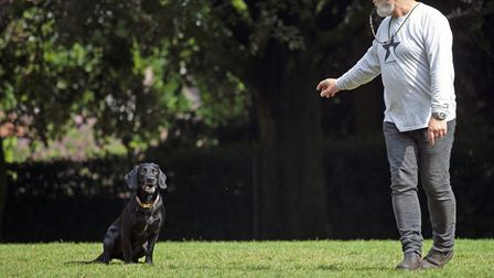 Tim with his dog Huxley being commanded to stay Picture: Lucie Jordanna Cohen