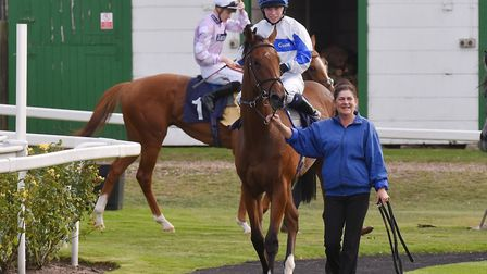 Protected Guest, winner of the feature race at Great Yarmouth Picture: Nick Butcher