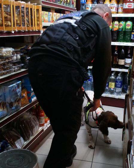 Sniffer dog used in seizing 210,760 illegal cigarettes in Kings Lynn Photo:Norfolk County Coucil