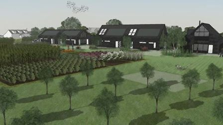 Impressions of eco-homes on Church Meadow in Wreningham, complete with orchard. Picture: South Norfo