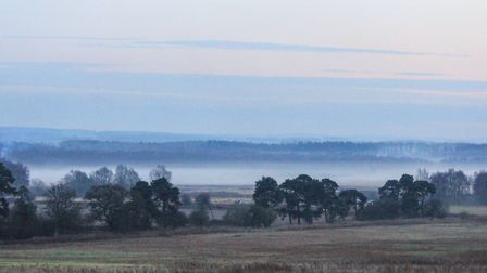 Overlooking the common as the mist starts to rise. Picture: Richard Brunton