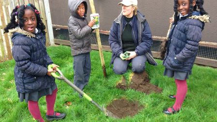 How it starts: Joannah Metcalfe and pupils bring the green touch to Cecil Gowing Primary School, Nor