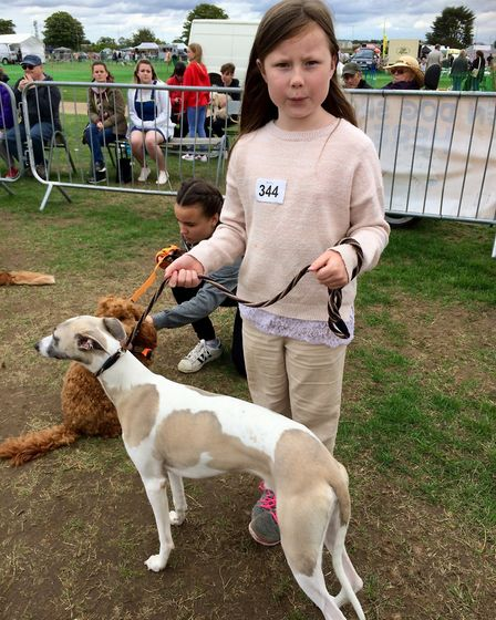 10 month old whippet Axel with Shania the All About Dogs Show 2018 at the Norfolk Showground. Photo: