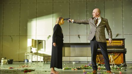 Programming highlights of the past year included the National Theatre production of Hedda Gabler. Pi