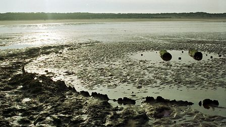A second timber circle emerges at Holme in 2001 Picture: john Hocknell