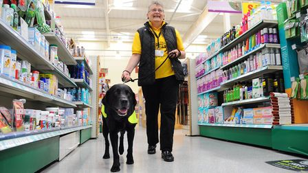 Carole Adam, volunteer co-ordinator dog assessor for the PAT charity with Bailey, a 10-year-old PAT