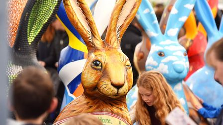 A meet the GoGoHares event was held at the Forum. Picture: Nick Butcher