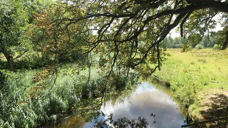 The new town site borders the protected Wensum river valley, Photo: Archant
