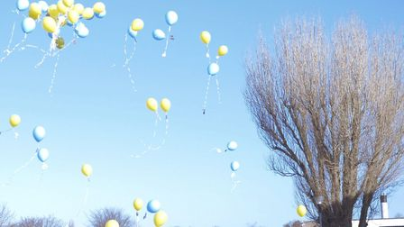Should balloon releases be banned to protect wildlife?