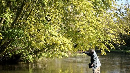 Trotting is the perfect way to search the autumn river Picture: John Bailey