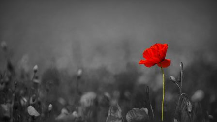 Norfolk and Waveney are remembering those who have fallen in conflict. Picture: Ian Burt