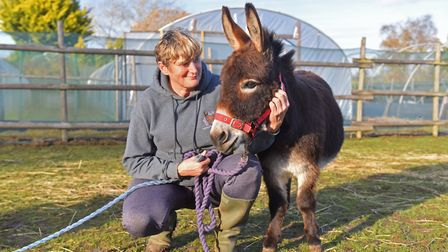 Sarah McPherson started Mini Donks in May 2017 as a social enterprise that offers visits from its mi