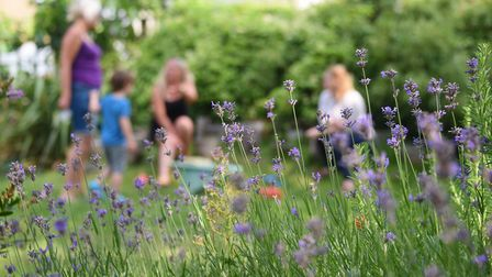 The Parent and Children Social Hour group enjoying Grapes Hill Community Garden. Picture: DENISE BRA
