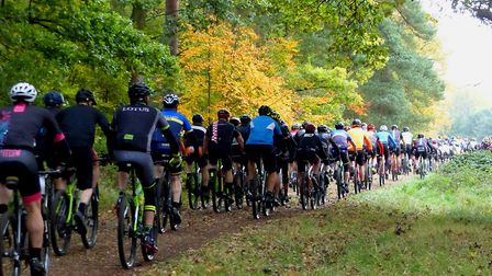 Heading for 90 minutes of racing in the forest at the Thetford Forest MTB racing Picture: Fergus Mui
