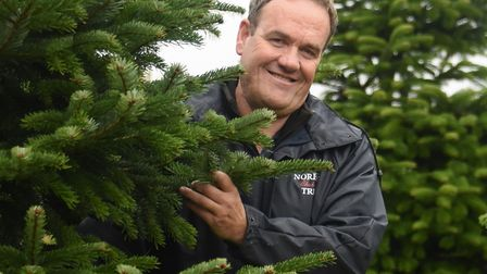 Farm manager Andrew Hunt, with some of the taller Nordmann firs at Norfolk Christmas Trees, based at