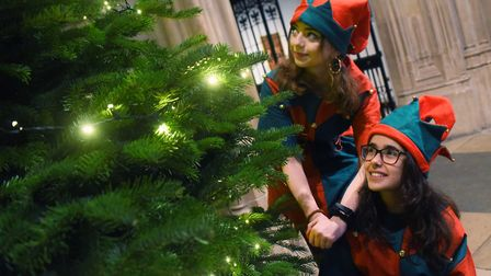Elves Rebekah Graham, 16, left, and Alessia Atzori, 17, by the Christmas Tree at the first Norfolk C