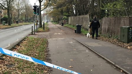 The police dog gets to work along Bluebell Road, Norwich. Picture: Neil Didsbury