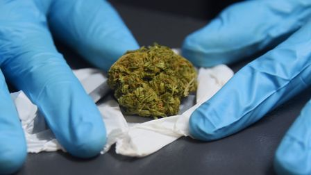 Two women from west Norfolk have been jailed for helping to run cannabis factory. Picture: DENISE BR