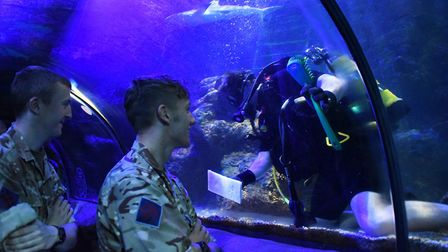 One of the divers from the 23 Parachute Regiment cleans the large Ocean Tank at the Great Yarmouth S