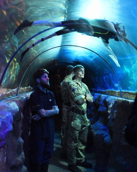 Divers from the 23 Parachute Regiment, clean the large Ocean Tank at the Great Yarmouth Sealife Cent
