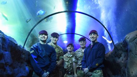 The divers from the 23 Parachute Regiment based at Ipswich, after cleaning the large Ocean Tank at t