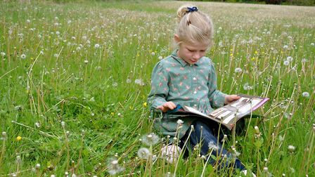 A campaign is running to get a copy of nature book The Lost Words into every Norfolk primary school.