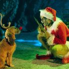 Are you like the Grinch? Take this Christmas quiz to find out. Picture Archant.
