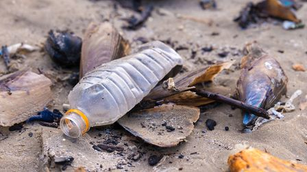 Plastic on the beach is a massive problem of our times Picture: Getty Images/iStockphoto