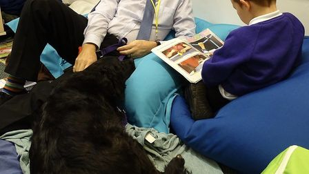 Queen's Hill Primary School students have been enjoying reading with the school dogs. Picture: Queen