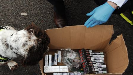 Suspected illegal cigarettes found in King's Lynn Picture: Chris Bishop
