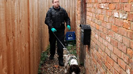 Scampy and his handler search an alleyway behind a row of shops Picture: Chris Bishop