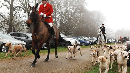 The hounds move off from the West Norfolk Hunt's Boxing Day meet Picture: Chris Bishop