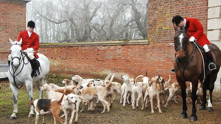 Hounds at the West Norfolk Hunt's Boxing Day meet at Raynham Hall Picture: Chris Bishop