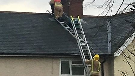 Emergency services rescued a cat stuck on the roof of a house in Great Yarmouth on Wednesday afterno