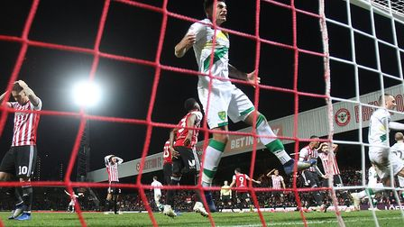 Ben Godfrey leads the celebrations for Timm Klose's late leveller at Brentford Picture: Paul Chester